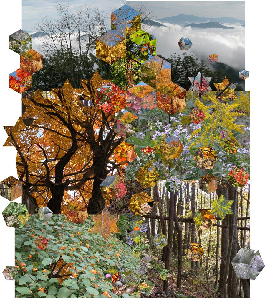 Starforest Quilts - Burnsville Town Center Quilt - Making of : nature quilt - Adamdwight.com